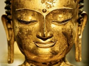 buddha01-1380872be59c34468ef8914264491880750d6017-s800-c85